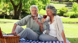 Mature couple clinking their glasses of red wine Footage