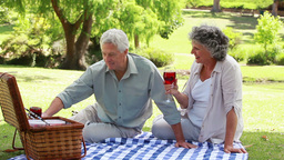 Mature people sitting on a blanket with glasses of red wine Live Action