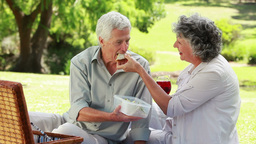 Happy mature couple eating a picnic Footage
