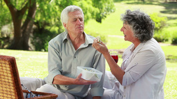 Happy mature couple eating a picnic Stock Video Footage