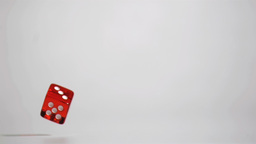 One red dice in a super slow motion rebounding Footage