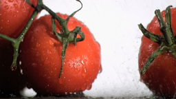 Tomatoes in super slow motion watering by droplets Footage