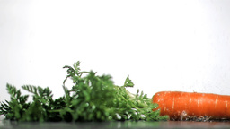Tasty carrot in super slow motion receiving drops Footage