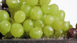 Many grapes in super slow motion being soaked Footage