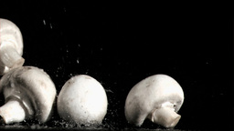 Raindrops in super slow motion falling on mushroom Stock Video Footage