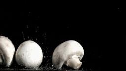 Raindrops in super slow motion falling on mushroom Footage