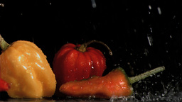 Tasty vegetables in super slow motion receiving ra Footage