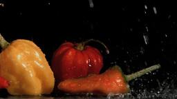 Tasty vegetables in super slow motion receiving ra Footage
