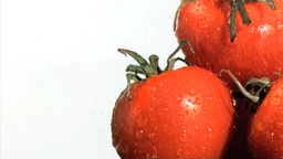 Vegetables being watered in super slow motion Stock Video Footage