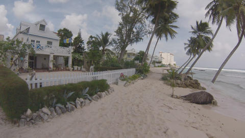 Beach House Palm Trees stock footage