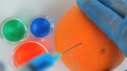 Scientist injecting a product in an orange Stock Video Footage