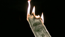Bank note in super slow motion burning Footage