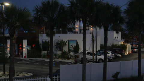 1811 Palm Trees With Restaurant In The The Backgro stock footage