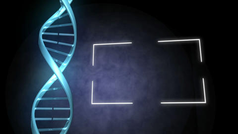 Blue DNA next to a frame Animation