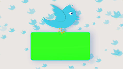 Chroma key screens holding by a bird Animation
