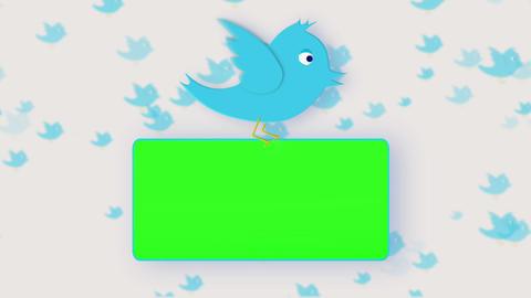 Chroma key screens holding by a bird Animation
