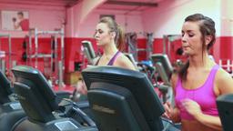 Two women running on treadmills Stock Video Footage