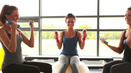 Women group lifting weights on exercise ball Footage