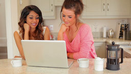 Women drinking coffee while looking at laptop Stock Video Footage