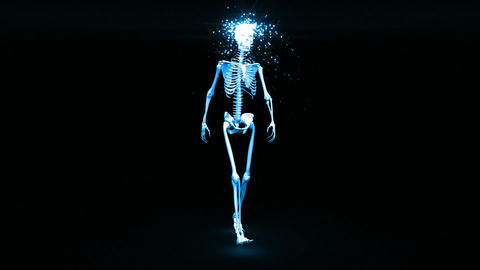 Skeleton appears and becomes fully formed human Stock Video Footage