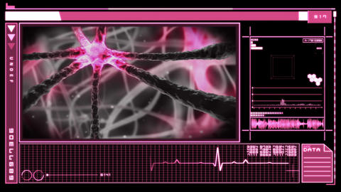 Interface Showing Neuron Pulsing Through Nervous S stock footage