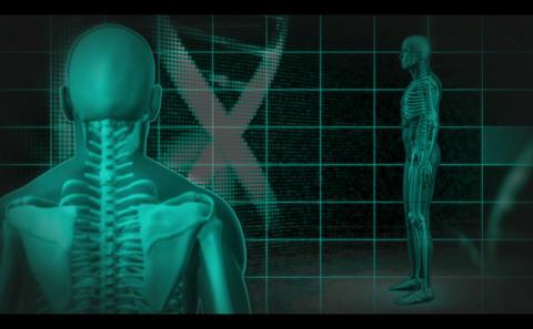 Revolving human skeleton figures Animation