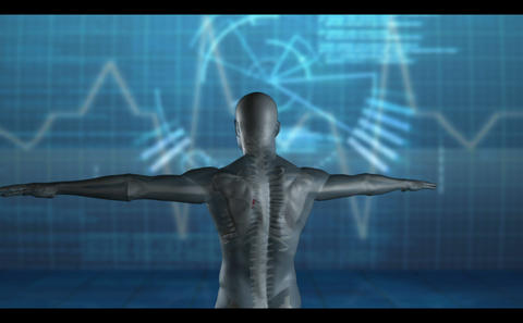 Medical video of revolving human figure Animation
