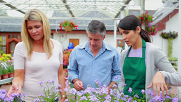 Couple and assistant looking at plants Footage