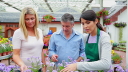 Couple and assistant looking at plants Stock Video Footage