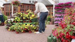 Man and child buying flowers Footage