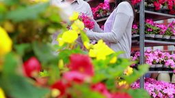 Customers standing next to a flower shelf Stock Video Footage