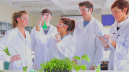 Chemists holding beaker while doing research Stock Video Footage