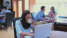 Woman drinking coffee while typing in college cafe Stock Video Footage