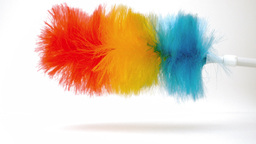 Feather duster revolving on itself Footage