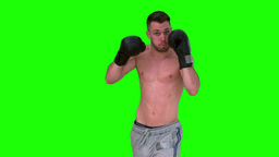 Man Boxing With Black Gloves stock footage