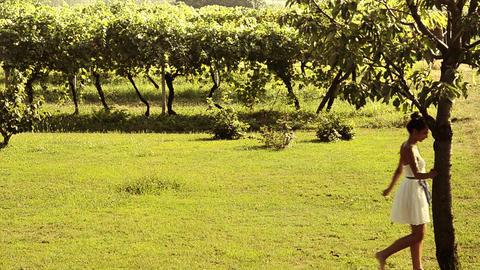 girl walking in a vineyard Stock Video Footage