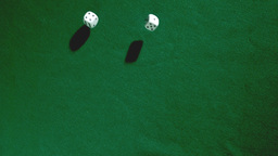 Throwing of dices on green table Live Action