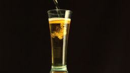 Beer filling a glass Stock Video Footage