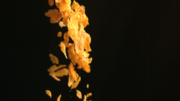 Cereals falling Stock Video Footage