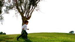 Little child running around a tree Footage