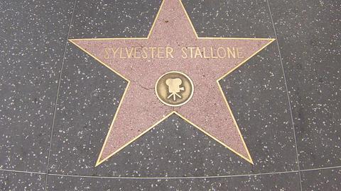 hollywood walk of fame star walking shot sylvester Live Action