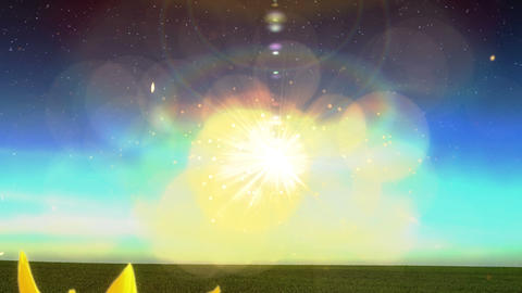 1965 Flying Into Heaven with Sunflowers Glowing, 4 Stock Video Footage