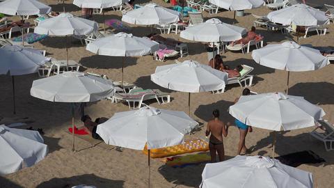 Golden Sands beach (Zlatni Piasci) in Bulgaria. 4K Stock Video Footage
