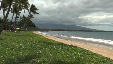 Idyllic Sugar Beach At Maui Island Hawaii stock footage