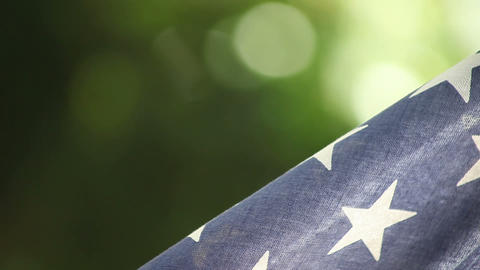 USA Flag On Green Background stock footage