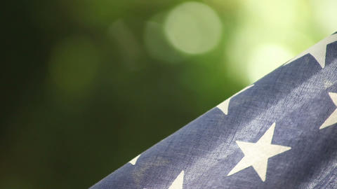USA flag on green background Stock Video Footage