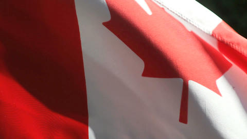 Canada flag in high winds Footage