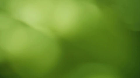 green circles background Stock Video Footage