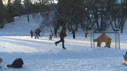 HD2008-12-11-9 shinny ice skate Stock Video Footage