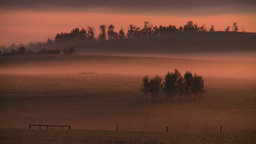 HD2008-7-1-9 sunrise fog Stock Video Footage